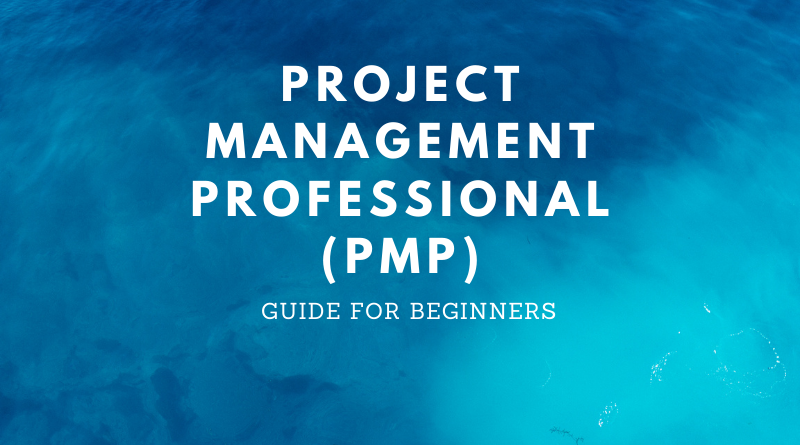 Project Management Professional Guide
