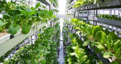 agriculture farming