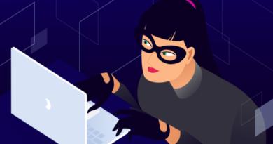 Why WordPress Websites Get Hacked
