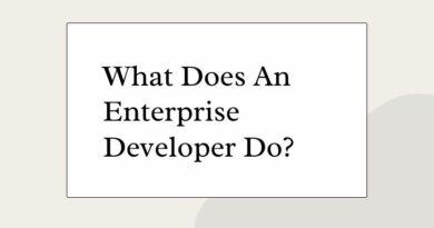 What Does An Enterprise Developer Do