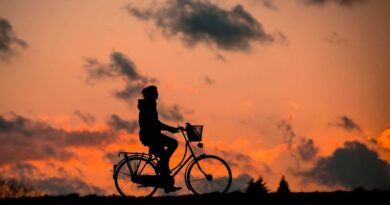 Why Cycling Is a Great Activity for Families